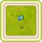 Name:  Little fish (blue and yellow).jpg Views: 167 Size:  11.2 KB