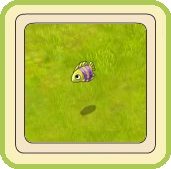 Name:  Little fish (yellow and lilac).jpg Views: 180 Size:  11.2 KB