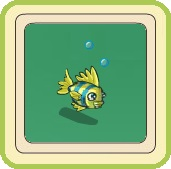 Name:  Cheery coral-dweller in action.jpg Views: 176 Size:  9.6 KB