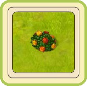 Name:  Emblem of roses.jpg