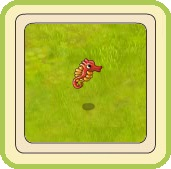 Name:  Seahorse (red).jpg