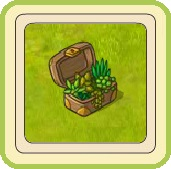 Name:  Succulent surprise.jpg