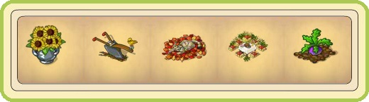 Name:  Sunny floral arrangement, Taken plough, Tara, Thanksgiving (7 seats), Turnip.jpg