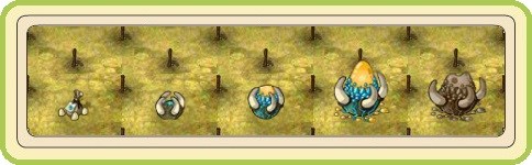 Name:  Festive Dragon's Grove, Scaled Beet (Premium), stages of growth.jpg Views: 34 Size:  34.0 KB