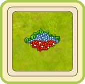 Name:  Mushroom puzzle part 4 of 4.jpg