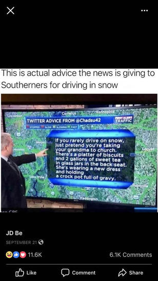 Name:  Southerner driving in snow.jpg