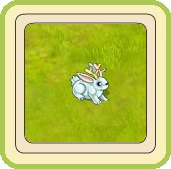 Name:  snowy jackalope.jpg